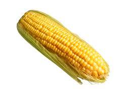 y corn
